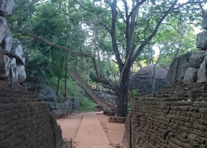 Sigiriya-lion-rock-Sri-Lanka10