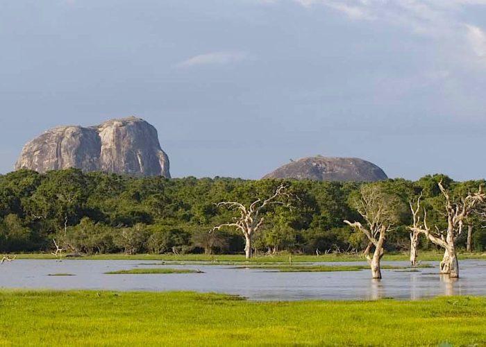 Yala-park-elephant-rock