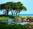 Yala-park-ocean