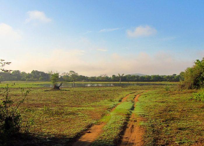 wasgamuwa-nat-park