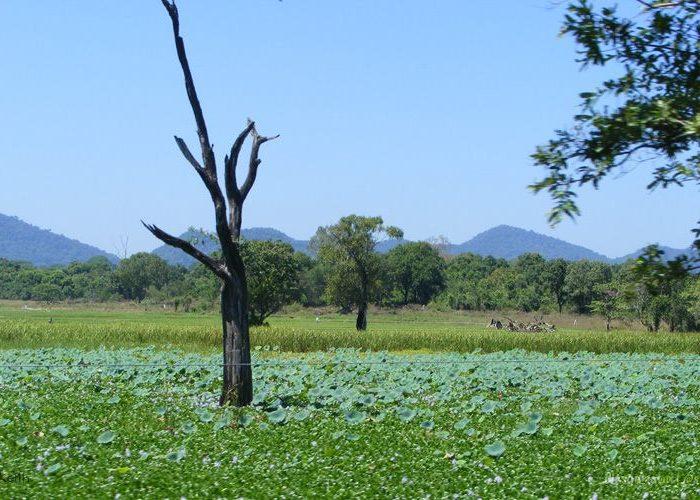 wasgamuwa-sri-lanka
