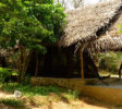 wilpattu-tree-house