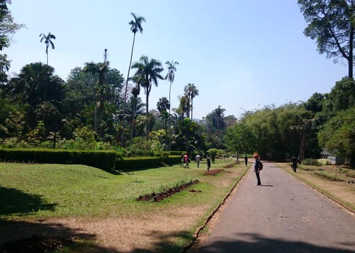Royal Botanic Garden Kandy