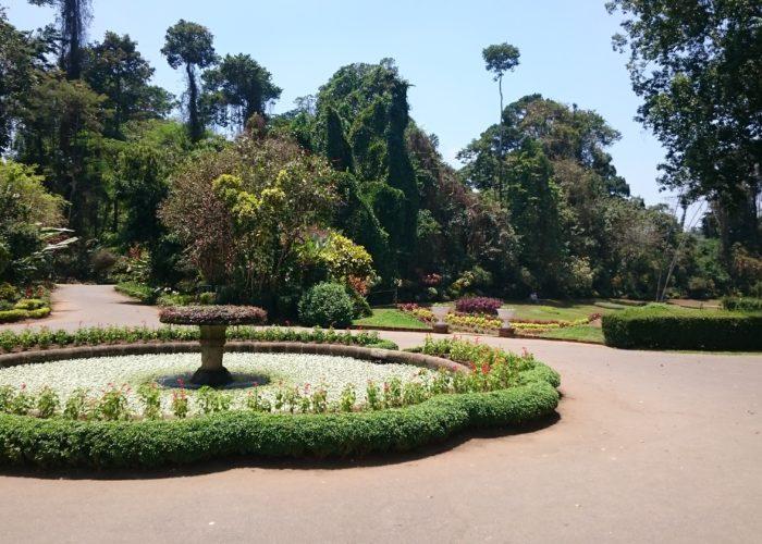 Royal Botanic Garden 9 Kandy