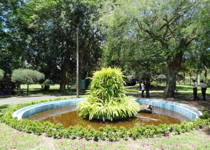 Henarathgoda Botanical Garden 1 Gampaha