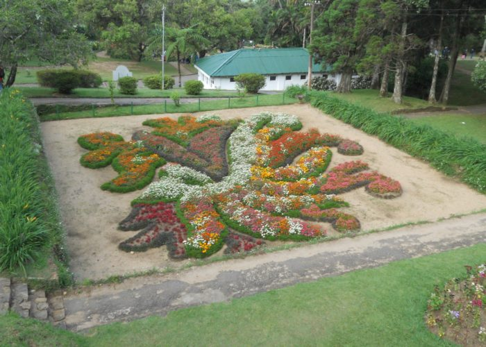Henarathgoda Botanical Garden 10 Gampaha