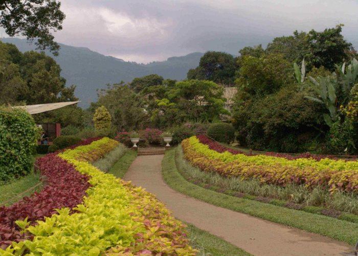 Henarathgoda Botanical Garden 15 gampaha