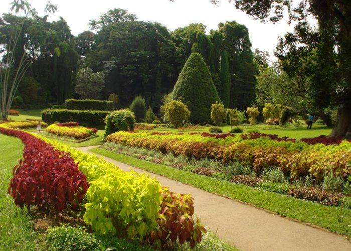 Henarathgoda Botanical Garden 16 gampaha