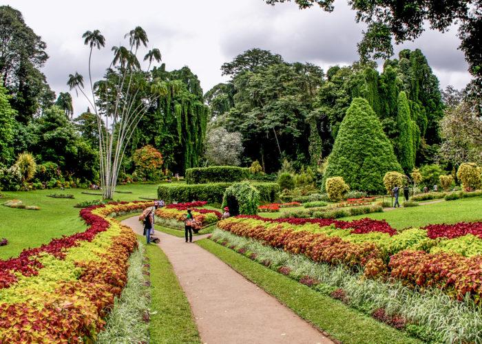Henarathgoda Botanical Garden 17 Gampaha