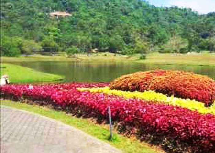 Henarathgoda Botanical Garden 8 Gampaha