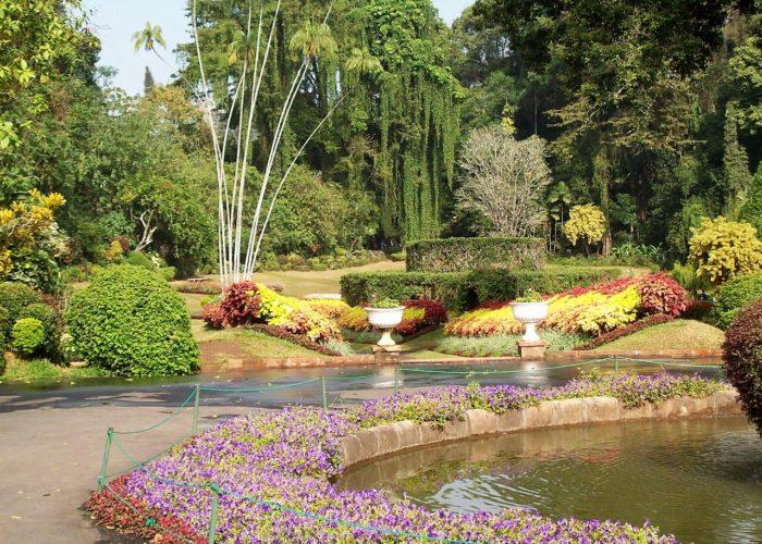 Hakgala Botanical Gardens 1