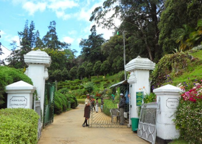Hakgala Botanical Gardens 2