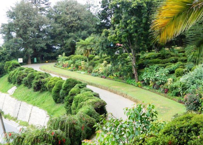 Hakgala 4 Botanical Gardens
