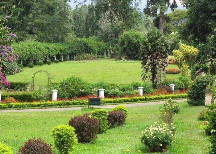 Hakgala 1 Botanical Gardens