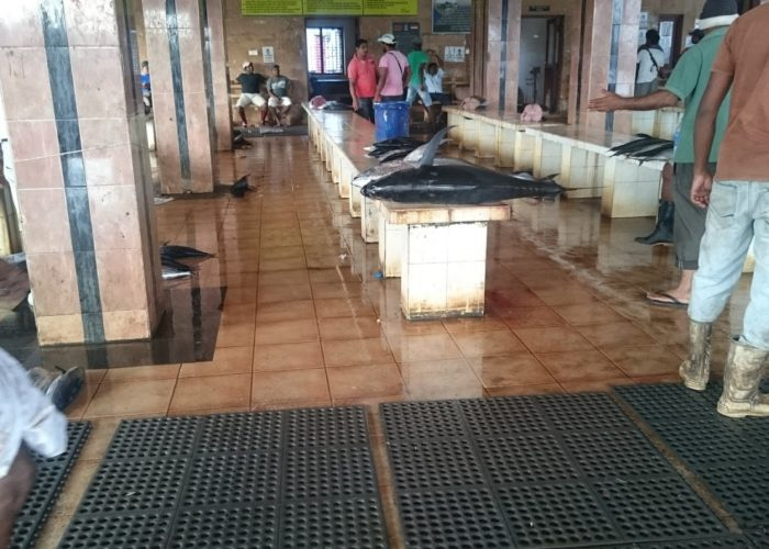 Fish-Market-Negombo-1