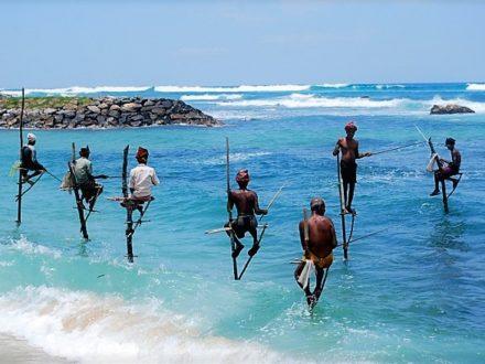 Sri Lanka Tourism – a mobile guide for tourists of lankan business