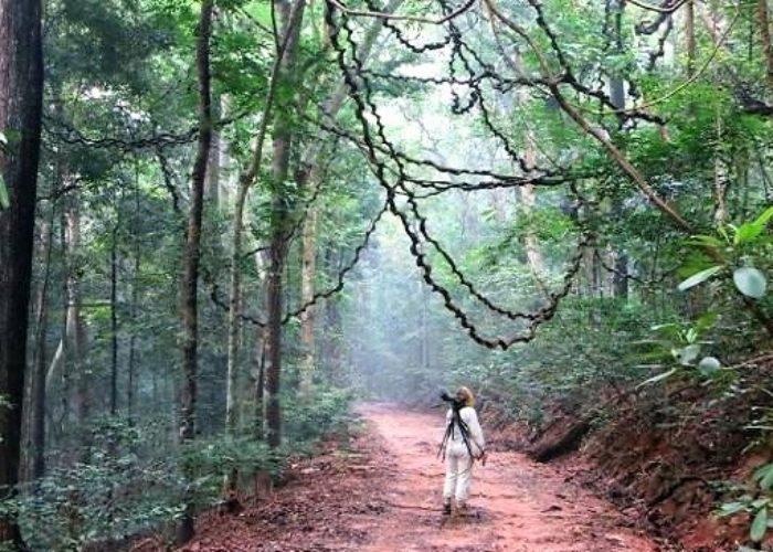 Udawatta Sanctuary 4