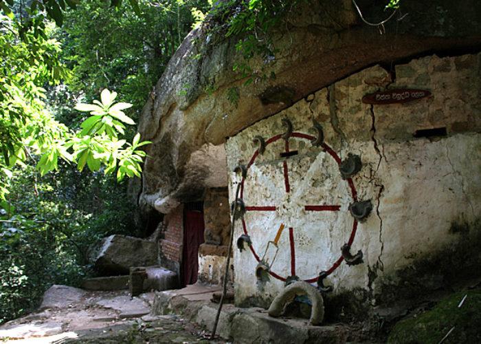 Udawatta Sanctuary 2