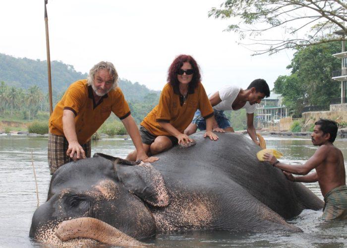 Elephants-Tourist-Washing-Pinnawala