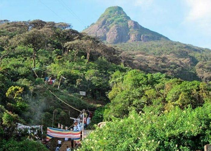 Park Adams-peak