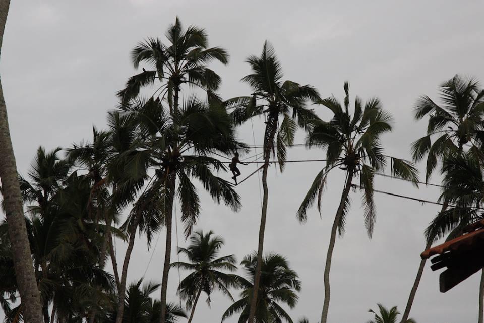 Сборщик кокоса на Маравилле