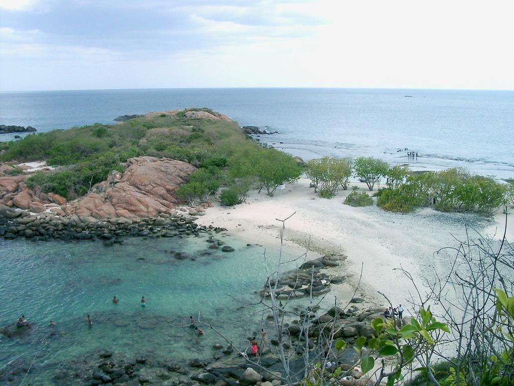 Нилавели кораллы