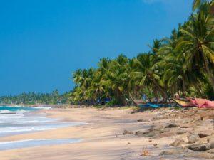 Январская погода на Шри-Ланке