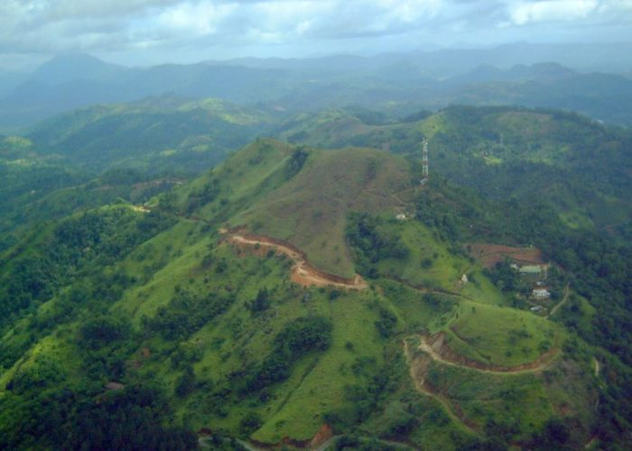 Ambuluwawa ICC Forest Resarvation