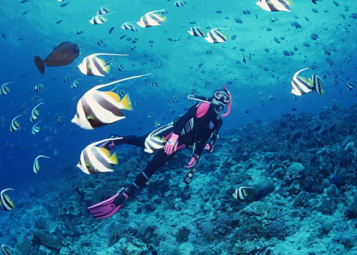 Blue Deep Diving Centre 22