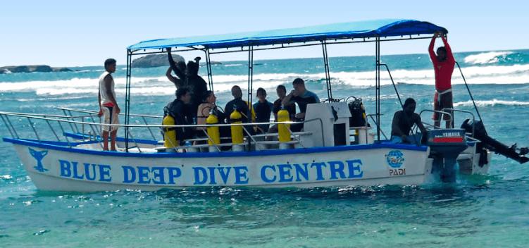 Blue deep diving centre hikkaduwa on the map photo - Deep blue dive centre ...