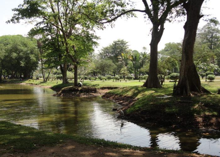 Park Victoria view