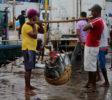 Fish Market 2 Beruwala
