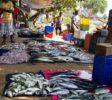 Gallel Fish Market