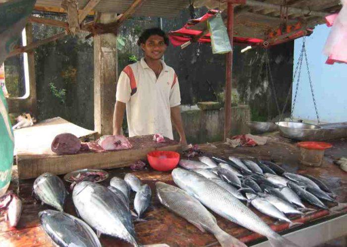 Hikkaduwa Fish market