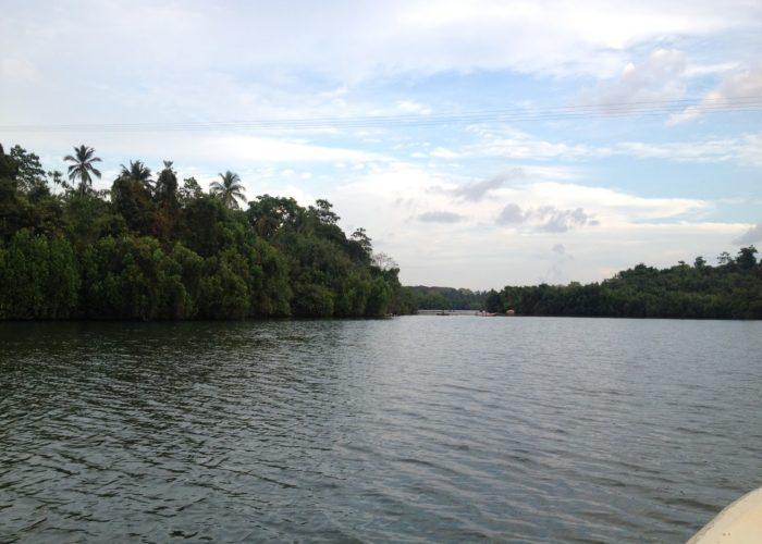 Koggala Lake 22