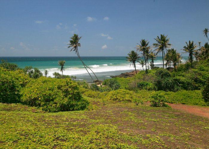 Weligama Beach Lanka 5