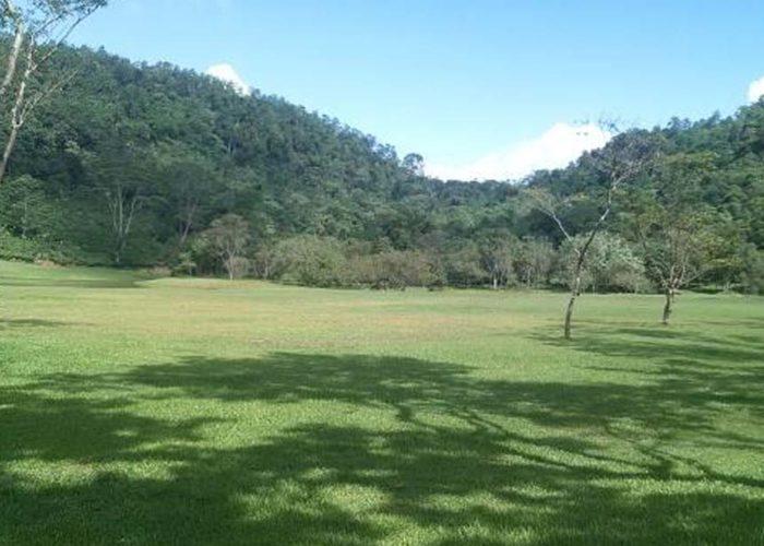 Seethawaka Wet Zone Botanical Garden 2