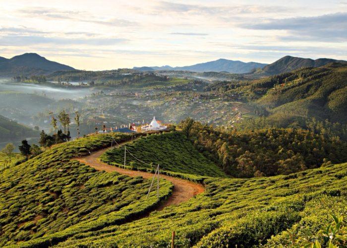 Sri-Lanka Nuwara Eliya view