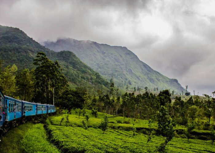 Sri-Lanka Nuwara Eliya train